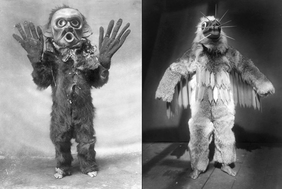 Left: Koskimo person Kwakiutl wearing a full body fur garment oversized gloves and mask of Hami dangerous thing during the Numhlim ceremony ca 1891 Right: Hamasilahl Kwakiutl ceremonial dancer