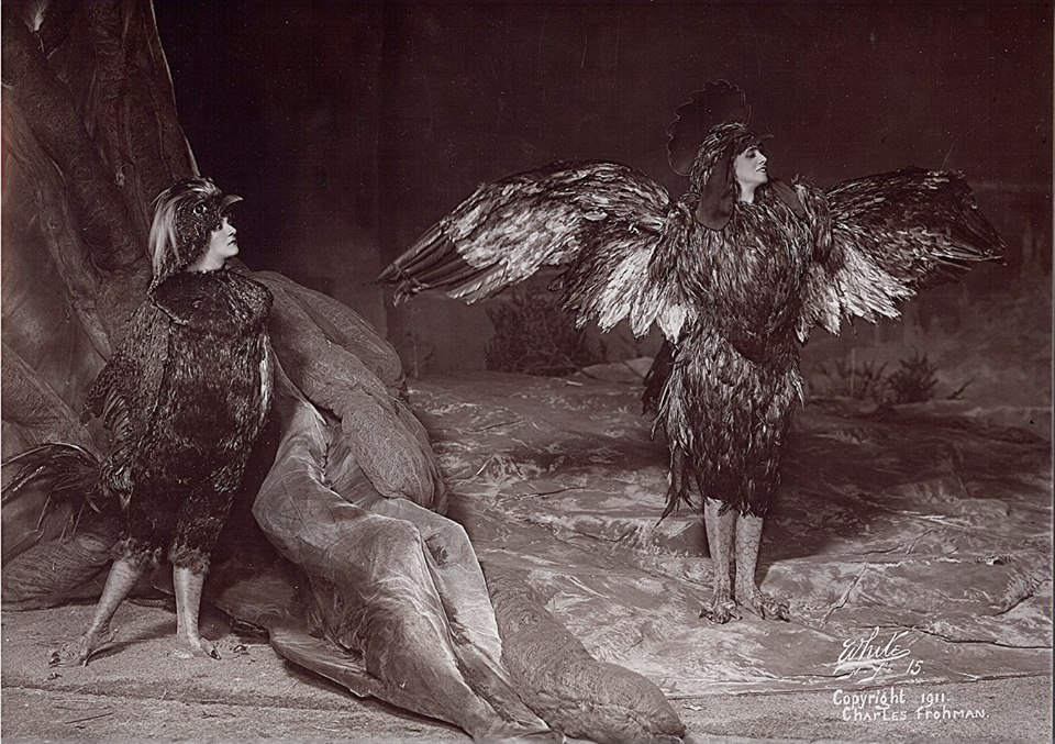 Chantecler, A Barnyard Fantasy From 1911
