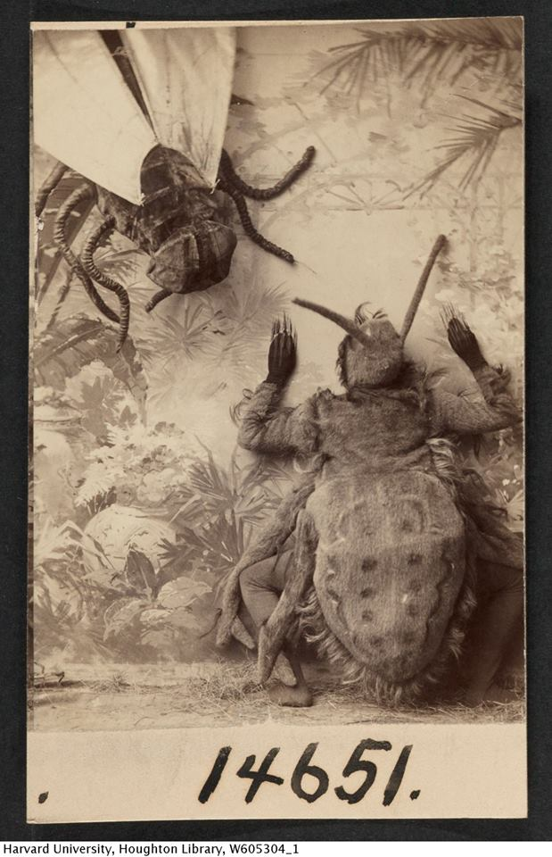 """American Vaudeville team 'The Athols' perform their """"Spider and the Fly"""" routine. Late 19th century . From the collection of the Houghton Library, Harvard University"""